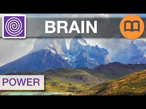 Brain Power Study Music, Alpha Waves for Improved Learning and Studying 🌀 #FOCUS04