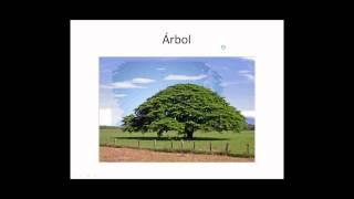 Курсы испанского языка - урок 1 - A1 - http://www.donoscar.ru