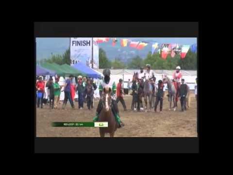 H.H. Sheikha Fatima Bint Mubarak Ladies Endurance Cup - Verona Italy
