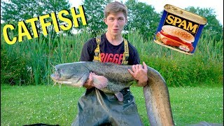 Catching MONSTER Catfish on SPAM -- Ch. 1