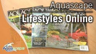 Aquascape Lifestyles Flipboard Magazine screenshot 4
