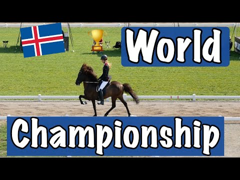 Icelandic Horse World Championship 2019 | Berlin Germany | Thursday