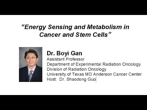 Energy Sensing and Metabolism in Cancer and Stem Cells