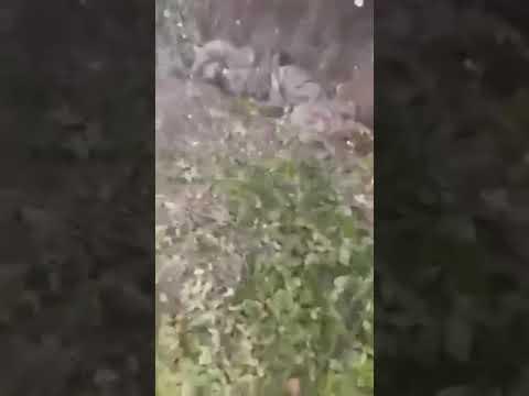 21+ Карабах 2020 Армянский спецназ уничтожил бригаду ВС азербайджана