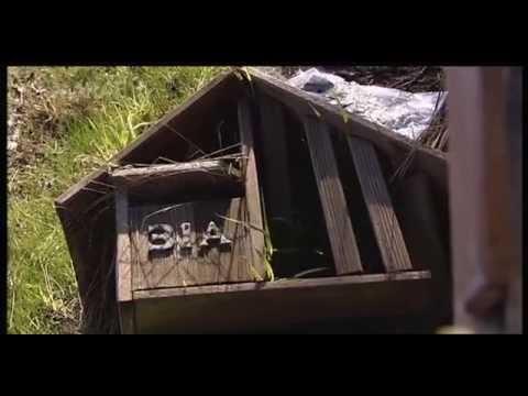 Te Tai Tonga – Fight for the South