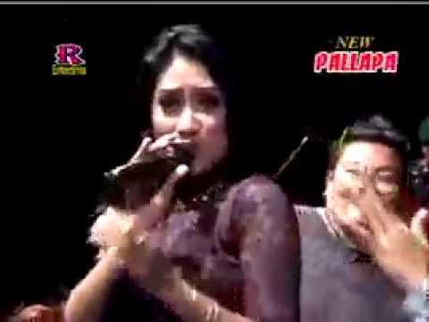 Ilalang Anisa Rahma New Pallapa