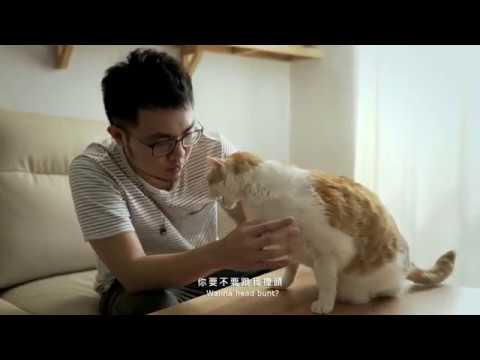 IKEA X黃阿瑪「後宮的華麗變身」居家改造影片