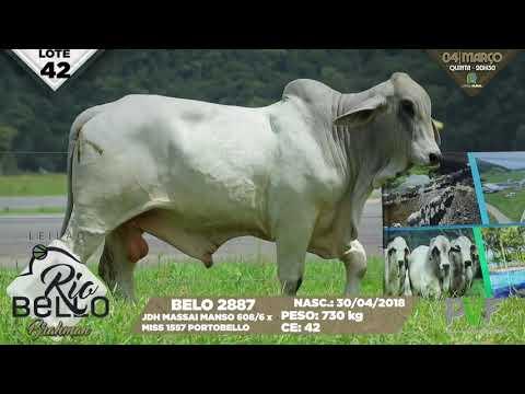 LOTE 42   BELO 2887