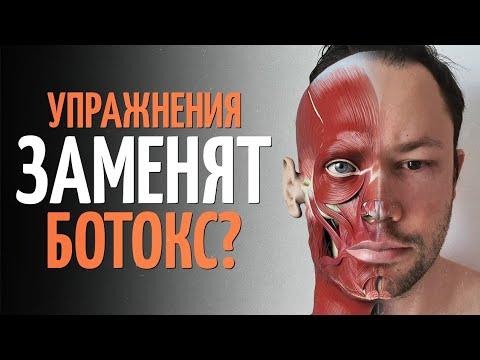 Как подтянуть овал лица? Мышцы леваторы.