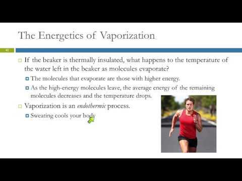 11.5 Vaporization & Vapor Pressure