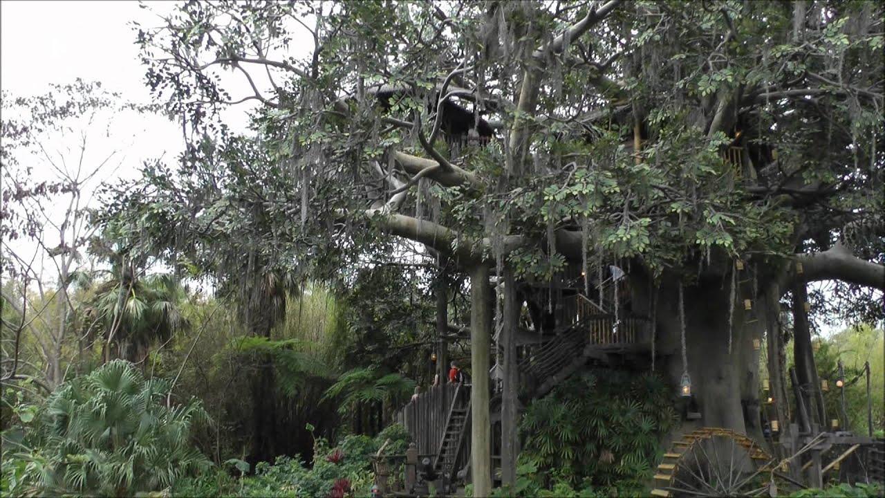 Swiss Family Treehouse Exterior Magic Kingdom Walt