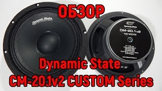 Обзор Dynamic State CM 20 1v2 CUSTOM Series