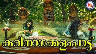 സര്പ്പപ്രീതിയ്ക്കായി ഒരു കരിനാഗക്കളംപാട്ട് | Sarpam Paattu | Nagaraja Song | Nadanpattukal