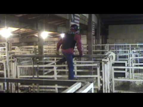 Dan S First Bull Ride At 3 Bar B Rodeo Youtube