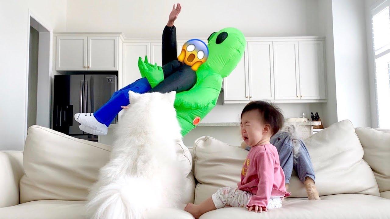 아빠가 외계인에게 납치된 모습을 본 강아지와 아기