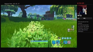 Fortnite gameplay, sgt. Green clover skin