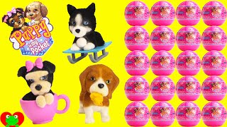Puppy In My Pocket Surprise Balls Series 2