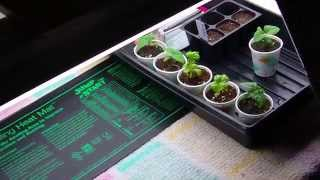 Make A 4-tube Grow Light (how To Assemble) Vegetable Garden