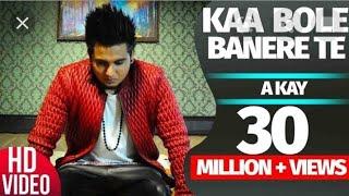 Song- Kaa Bole Banere Te (Audio Remix).