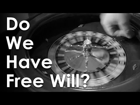 Do We Have Free Will? Or Is Everything Just Chance?