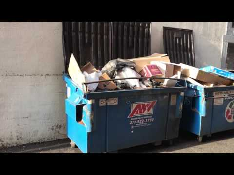 Springfield Illinois Trash Removal