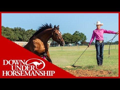 Clinton Anderson: Method Ambassador Tracy Reed - Downunder Horsemanship