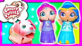 SHIMMER AND SHINE Nickelodeon with Chubby Puppies TheEngineeringFamily Funny Kids Toys Video
