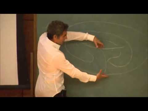 Hopkins Lecture: Mathematical Invariants: How to Know the Answer in Advance