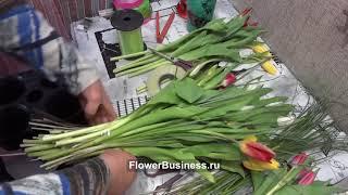 Букет из тюльпанов на 8 марта