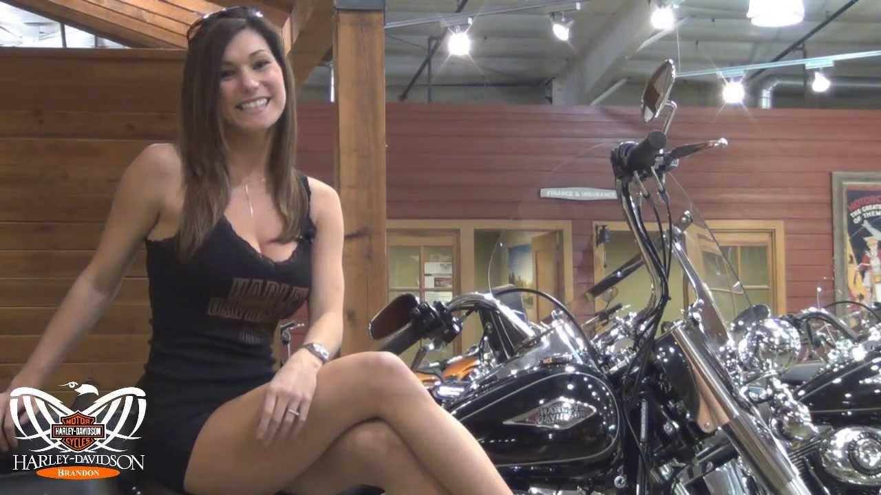 Harley Davidson Motorcycle Dealership