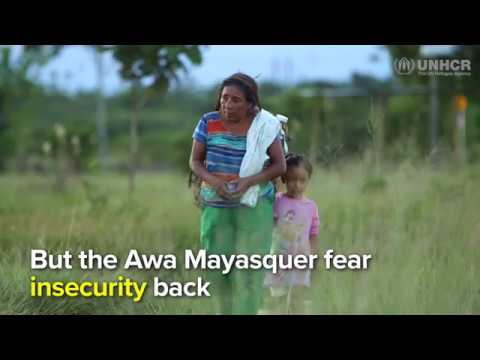 Colombia: Awa Mayasquer Community Displaced