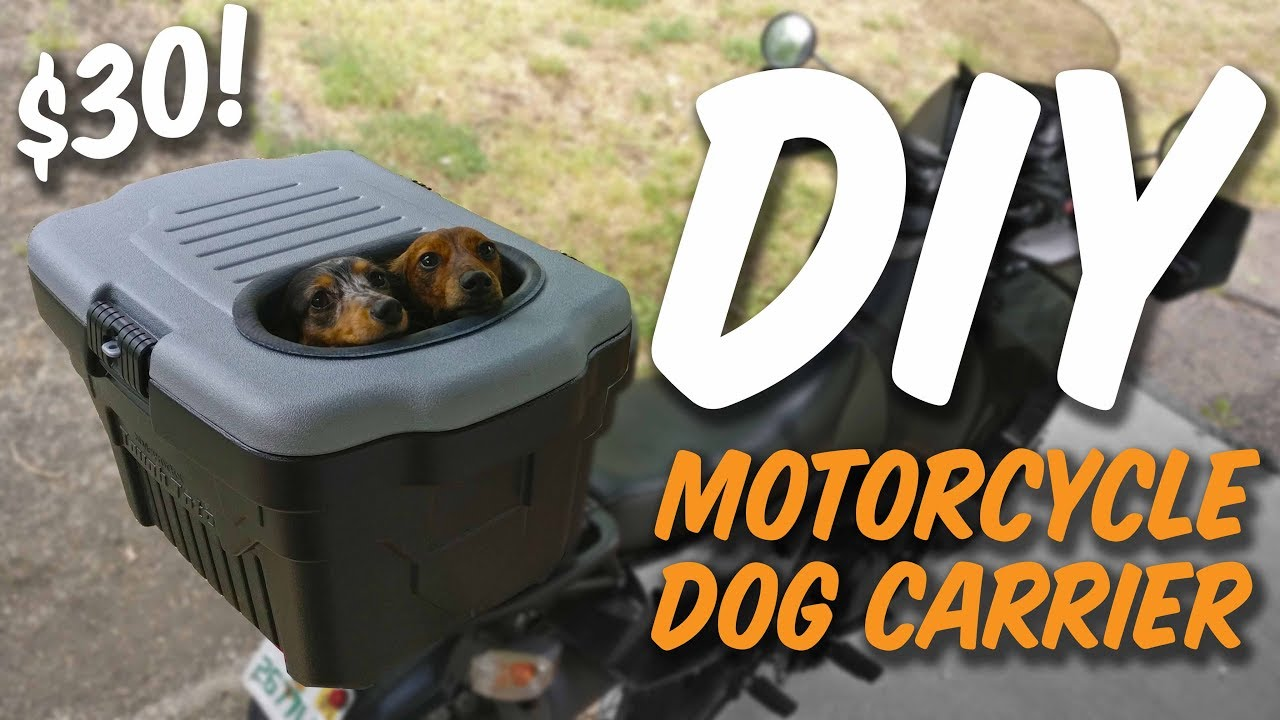 HOMEMADE MOTORCYCLE DOG CARRIER (UNDER