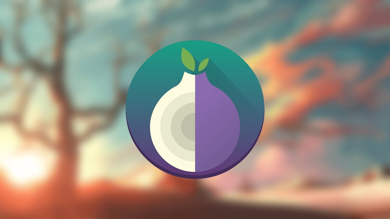 Tor browser linux portable гирда что делать на тор браузер гидра