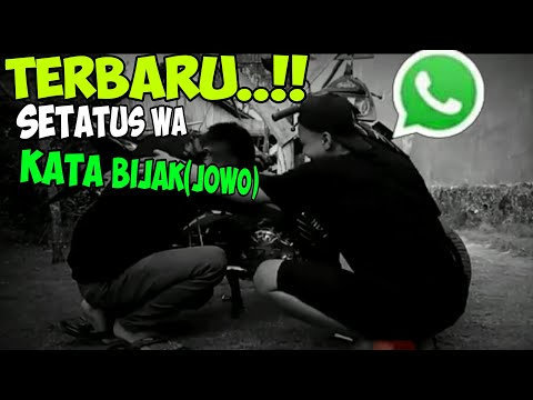 story-wa-bijak-terkeren//terbaru//kekinian