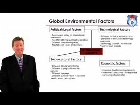 International Business Environment N