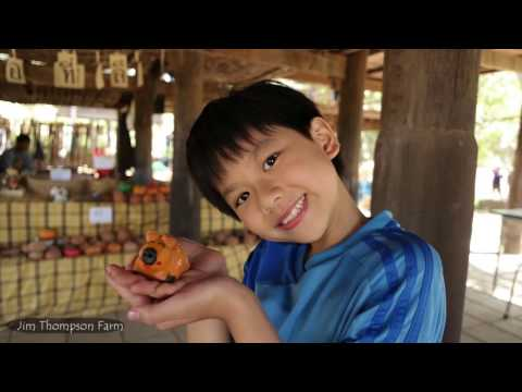 Phuket, Khao Yai, Bangkok with kids (2016)