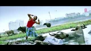 Mersalaayitten Video Song Tamil Versions