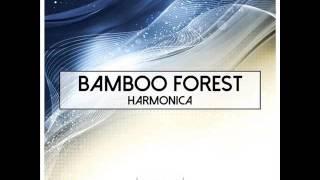 Bamboo Forest - Morning Light (Original Mix)