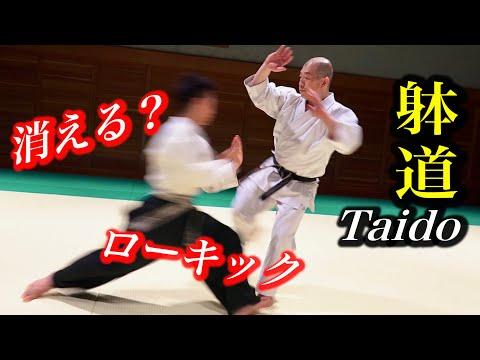 躰道にローキックしたら相手が消えた!Taido vs Low Kick, amazing technique
