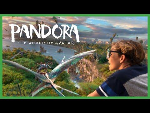 Disney's Animal Kingdom - Pandora: World of Avatar | Full Experience (Sam Kolder Inspired)