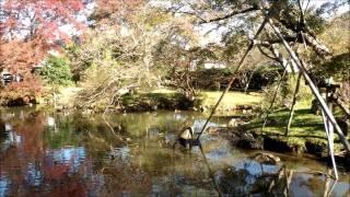 江川邸庭園(韮山)