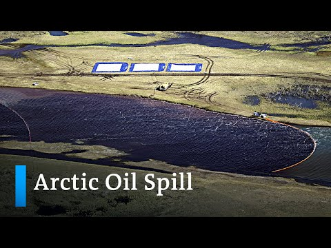 Russian mayor charged over massive Arctic oil spill | DW News