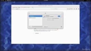 Configurar red con Dhcp en Fedora 23