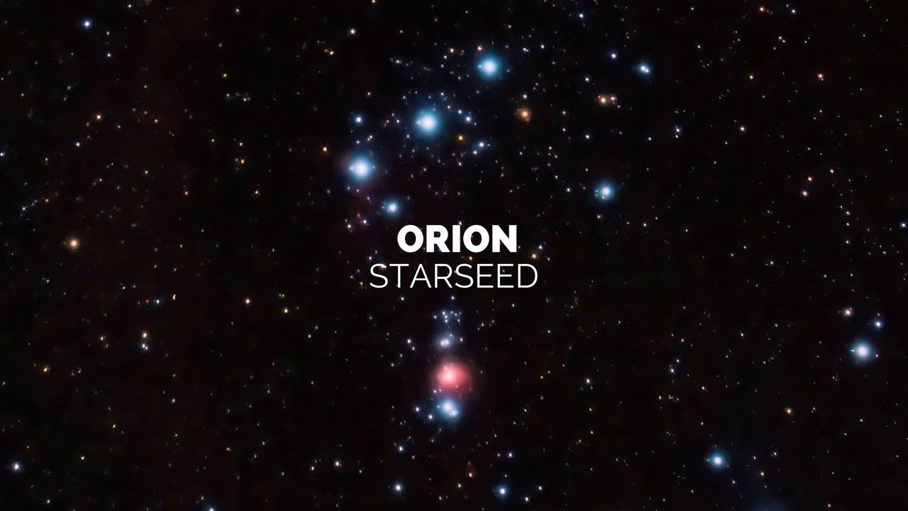 ORION STARSEED | Spiritual Warrior Path