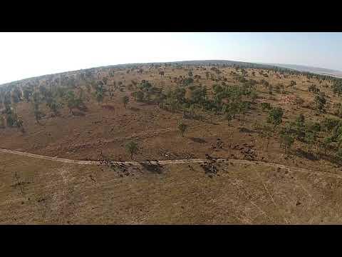 Unite Drones - Wildlife & Game Monitoring