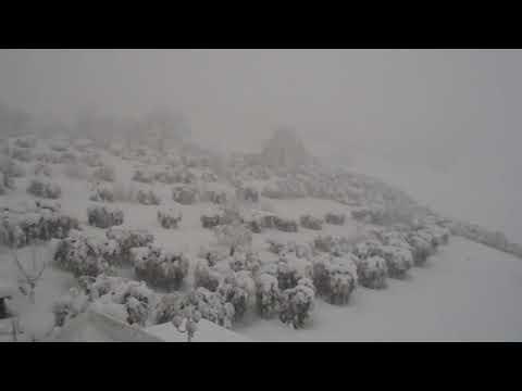 Nevicata Sant'Omero Gen2017 05