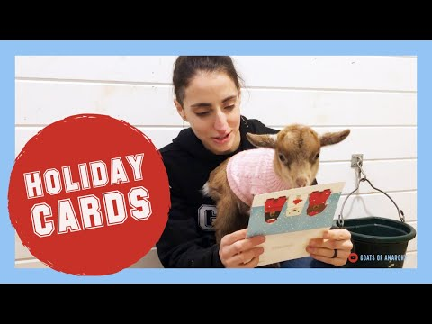 Maybel's Baybels Open Their Holiday Cards And Gifts