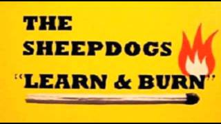 The Sheepdogs - Soldier Boy