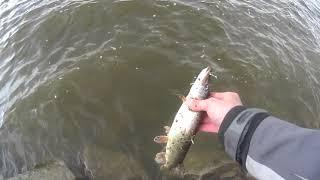 Открытие летнего рыболовного сезона в Панфилово