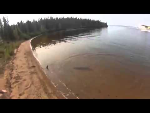 Знакомства в Узловой (Тульская область) -